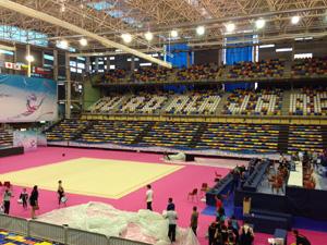 Guadalajara aspira a convertirse en Ciudad Europea del deporte 2018