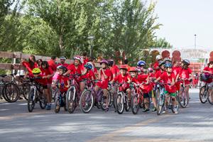 trillo_bicicleta290816