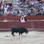 rober-1-trillo-toros-recortadores