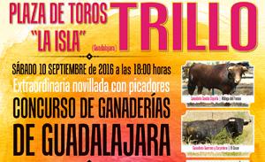 trillo_toros020916