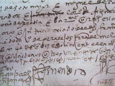 El curso tiene como objetivo básico un acercamiento al mundo de la documentación medieval y moderna