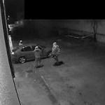 Cuatro personas detenidas por robo de vehículos, empresas y establecimientos comerciales