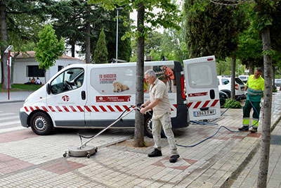 Los trabajos de limpieza han comenzado en las aceras de la avenida de La Constitución. Fotografía: Álvaro Díaz Villamil/ Ayuntamiento de Azuqueca de Henares