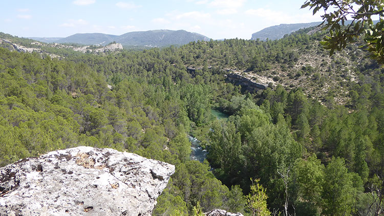 El Parque Natural del Alto tajo. Cerca de Hundido de Armallones (Foto: Romualdo Pinilla)