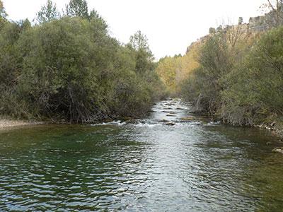 Juntas del Hoz Seca y el Tajo, Parque Natural del Alto Tajo. (Foto: Romulado Pinilla)