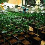 Detenidas dos personas por cultivar marihuana en un chalet de El Casar