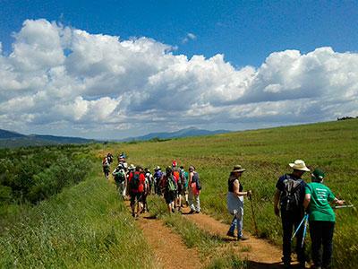 Participantes en la Ruta de la Jara