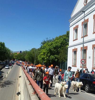 Entre 1.500 y 2.000 cazadores y pescadores se han manifestado este sábado por las calles de Guadalajara
