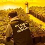 Detenidas en Albalate de Zorita dos personas por cultivar marihuana