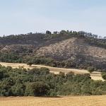 Prosigue por quinto día el incendio entre Almoguera e Illana