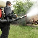 El calendario de fumigaciones se puede consultar en la web municipal
