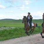 La Caballada de Atienza, al galope de los caballos