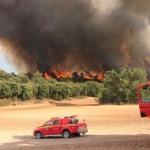 Declarado un incendio forestal en Almoguera