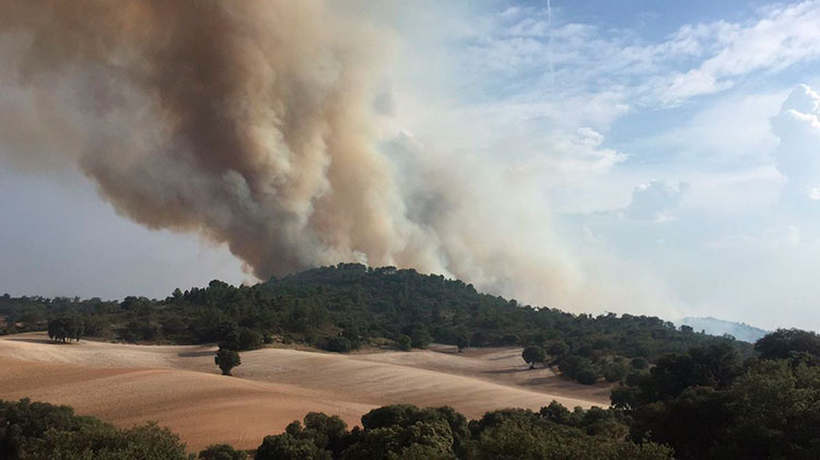 Imagen del incendio de Almoguera (Foto @ceisguadalajara)
