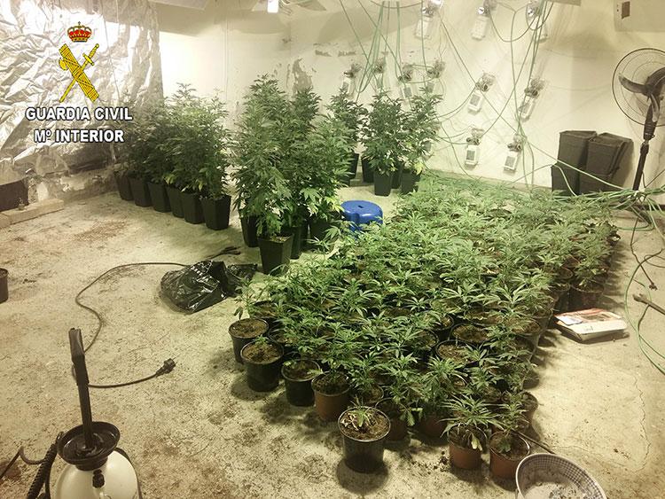 La droga aprehendida estaba en un chalet del municipio de Uceda