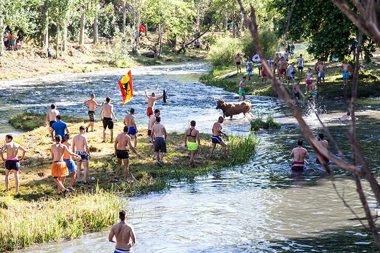 Más de 5.000 personas asistieron en Trillo a las Vacas por el Tajo