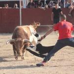 Cabanillas despide las fiestas hasta el próximo año