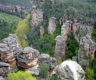 Parque Natural del Alto Tajo //Foto: Turismo Castilla-La Mancha
