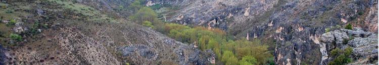 Una vista del Parque Natural del Río Dulce. (Foto: Áreas protegidas/JCCM)