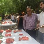 "Fontanar ha acogido este fin de semana la ""Fiesta del Tomate"""