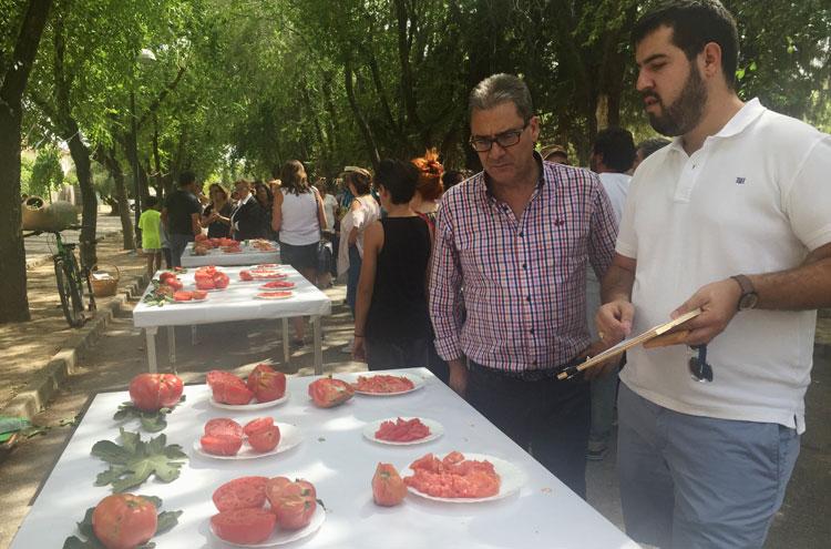 Un momento de la fiesta del Tomate de Fontanar