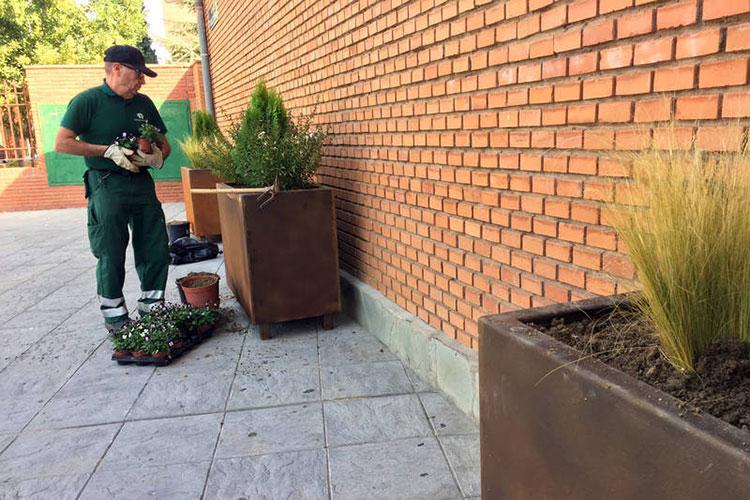 Plantación en las nuevas jardineras de la plaza de La Constitución, en la zona más próxima a la iglesia de la Santa Cruz. Fotografía: Ayuntamiento de Azuqueca