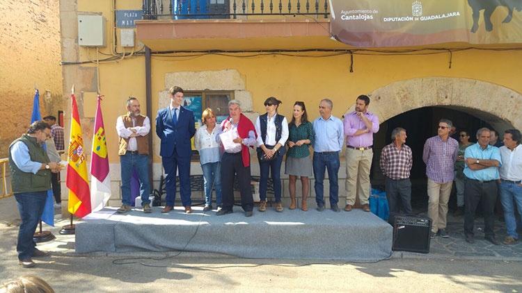 Celebración de la Feria de Ganado en Cantalojas (Foto Diputación Provincial de Guadalajara)