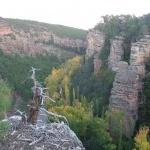 El Alto Tajo aspira a tener la Carta Europea de Turismo Sostenible
