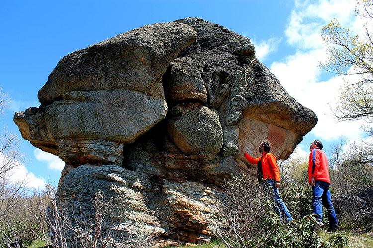 Bosque fósil de la Sierra de Aragoncillo