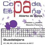 Guadalajara acoge desde hoy la Copa de España de Voley con más de 2600 participantes