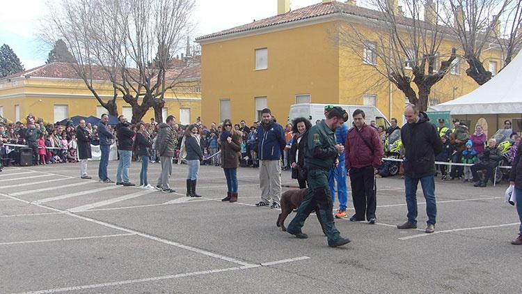 Demostración de la Unidad Canina de la Guardia Civil