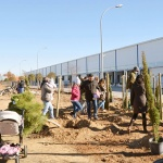 Este domingo nueva plantación de árboles en Azuqueca