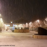 Foto galería: La nevada en Cabanillas del Campo