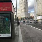 El Geoparque de Molina–Alto Tajo se promociona en Madrid