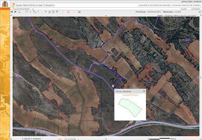 Imagen aérea donde se pretende construir la macrogranja de cerdos en Luzón