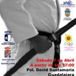 Este fin de semana Guadalajara acoge el XX Campeonato de España de Kata