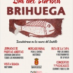 Pasacalles y Performance de la Banda de Música de Brihuega
