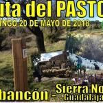 La Ruta del Pastor en Arbancón reivindica la vida y cultura rural