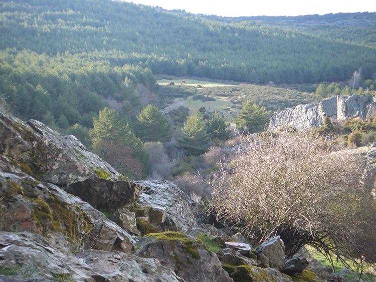 Río Pelagallinas
