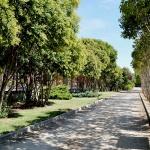 El Ayuntamiento de Azuqueca difunde consejos para combatir la ola de calor