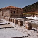 Saelices de la Sal volvió a reivindicar su pasado salinero