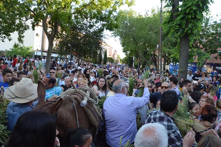 Foto: Älvaro Díaz Villamil/ Ayuntamiento de Azuqueca de Henares