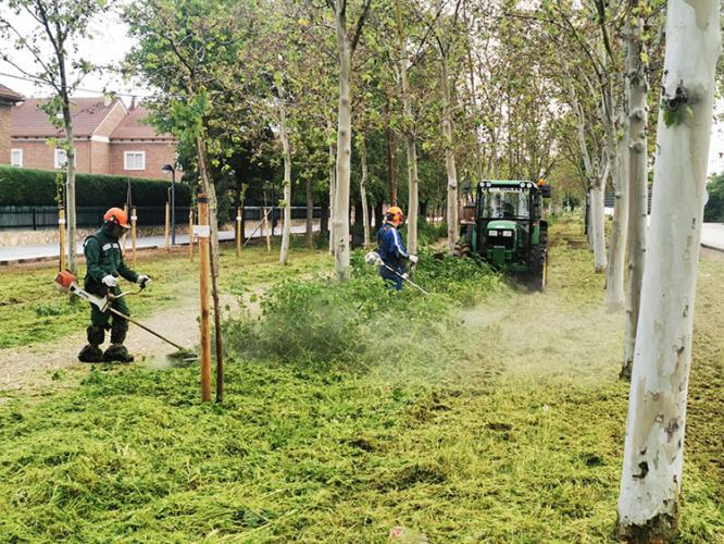 Los trabajos de Jardinería han comenzado en paseos y bulevares. Fotografía: Ayuntamiento de Azuqueca