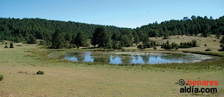 Laguna de La Salobreja, situada en el término municipal de Orea (Señorío de Molina).