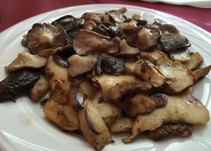 Setas de cardo y boletus en el Hostal Restaurante Ntra. Sra. del Pinar, en Galve de Sorbe.