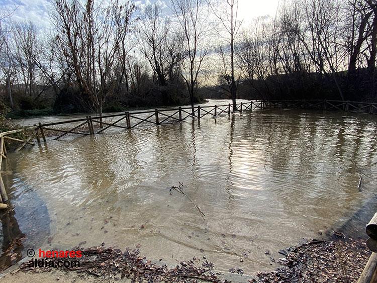 AIKE pide que se investiguen las obras de la ribera del Henares para aprender de los errores