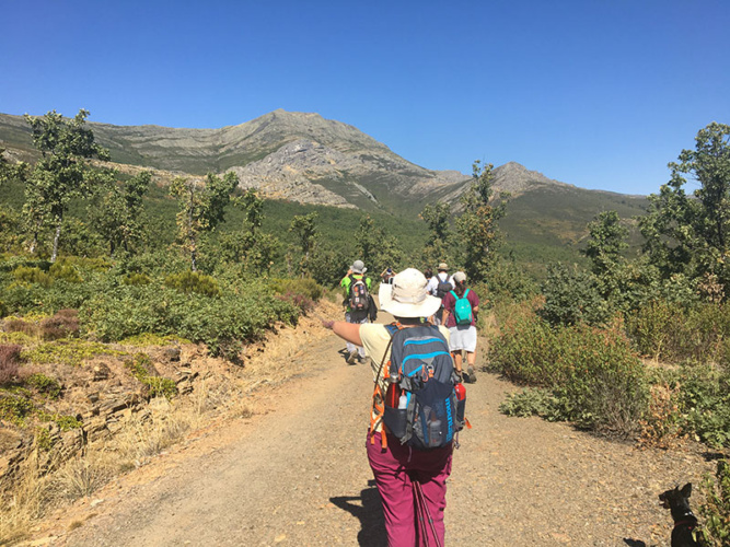 Senderistas por los caminos de la sierra con el Ocejón