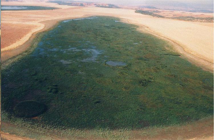Las Lagunas de Puebla de Beleña están declaradas Reserva Natural desde 2001.