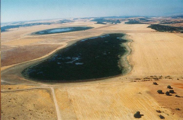Vista aérea de las Lagunas de Puebla de Beleña, que ocupan casi 200 hectáreas.