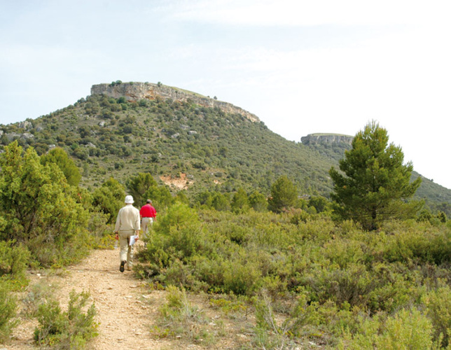 Camino de las Tetas de Viana, declaradas Monumento Natural en 2006.